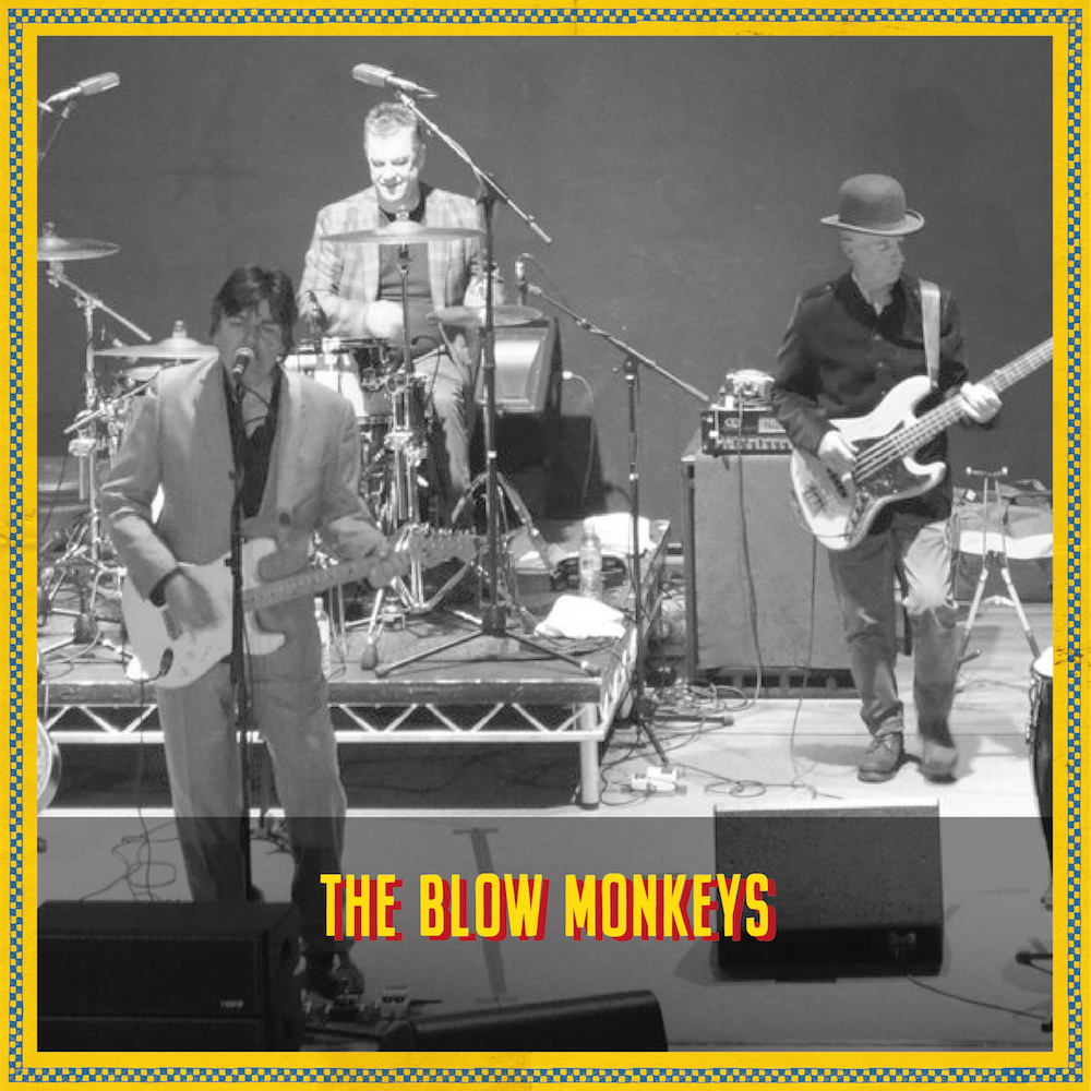 The Blow Monkeys